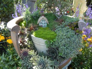 Best Plants for a Fairy Garden