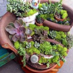 Broken Flower Pot Fairy Garden
