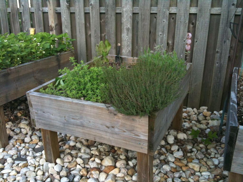 Build Raised Herb Garden