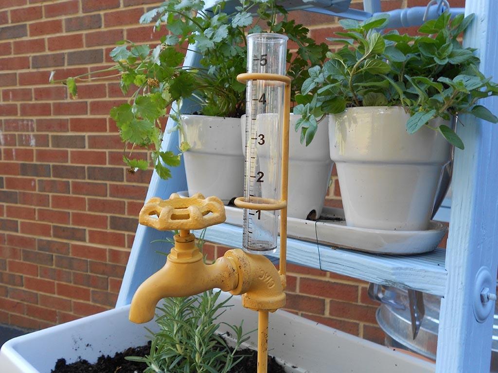 Build Your Own Herb Garden Box