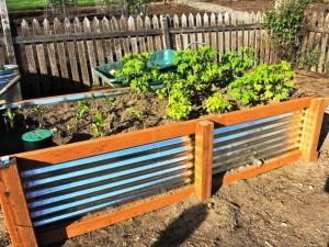 Building Wooden Planter Boxes