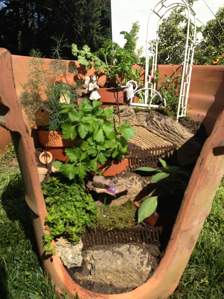 Clay Pot Herb Garden