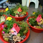 Container Ideas for Fairy Gardens