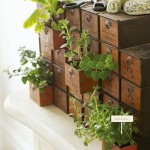 Creative Indoor Herb Garden Ideas