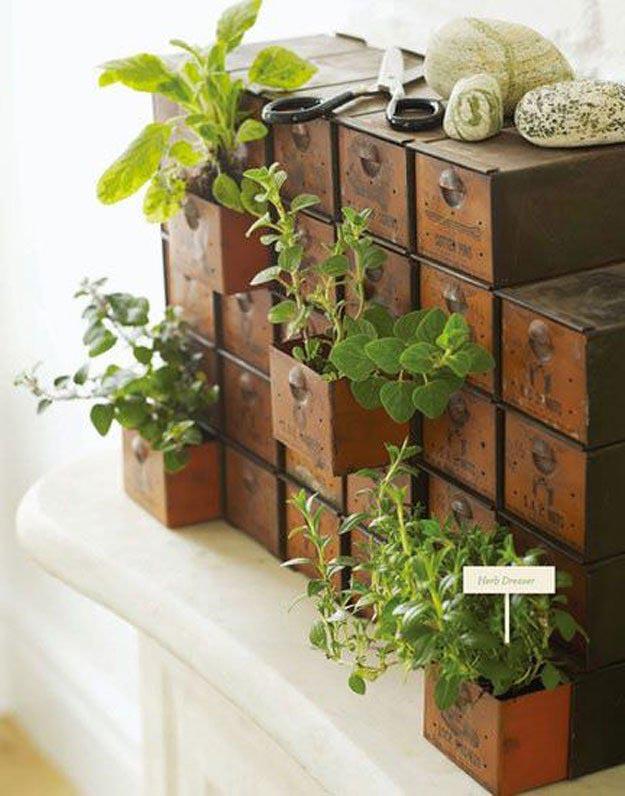 Creative Indoor Herb Garden Ideas