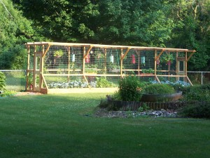 Deer Resistant Vegetable Garden Design Plan