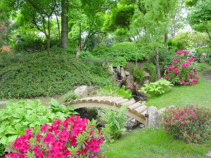 Design for a Small Herb Garden