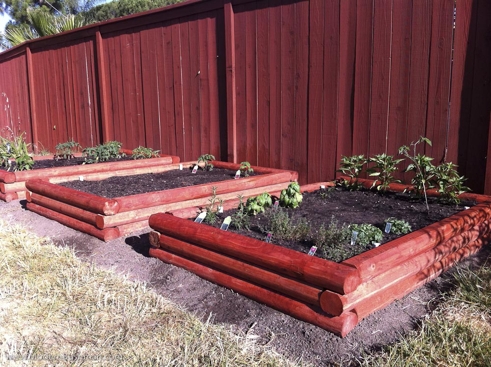 DIY Fence for Vegetable Garden