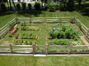 diy vegetable garden fence ideas - Deer Proof Vegetable Garden Ideas