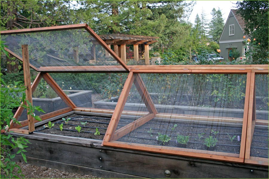 DIY Vegetable Garden Fence Ideas