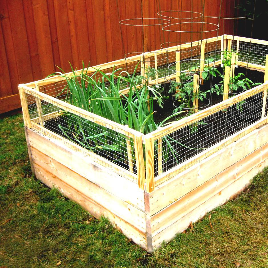 DIY Vegetable Garden Fence