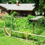 DIY Vegetable Garden Fence