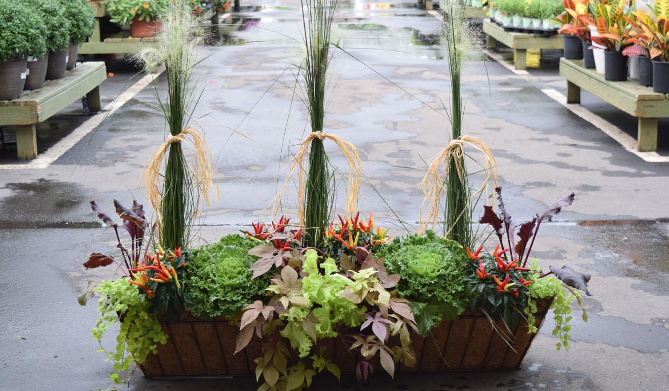 DIY Window Box Herb Garden