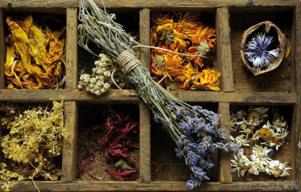 Dried Flowers for Arrangements