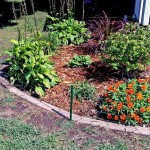 Electric Fence Garden Kit