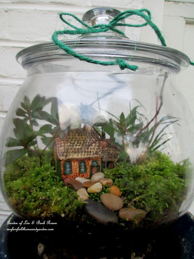 Fairy Container Garden Instructions