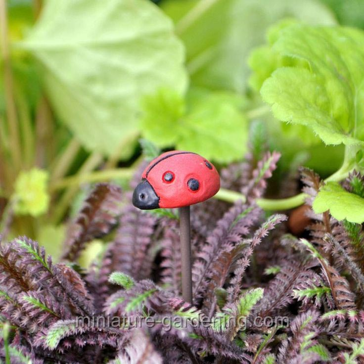 Fairy Garden Miniature Animals