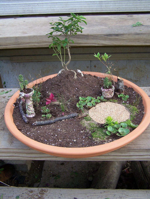 Fairy Garden Miniatures Supplies