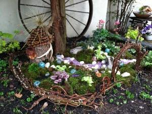 Fairy Garden Outdoor Plants