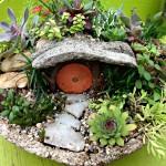 Fairy Garden Plants for Shade