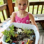 Fairy Garden Plants for Shade