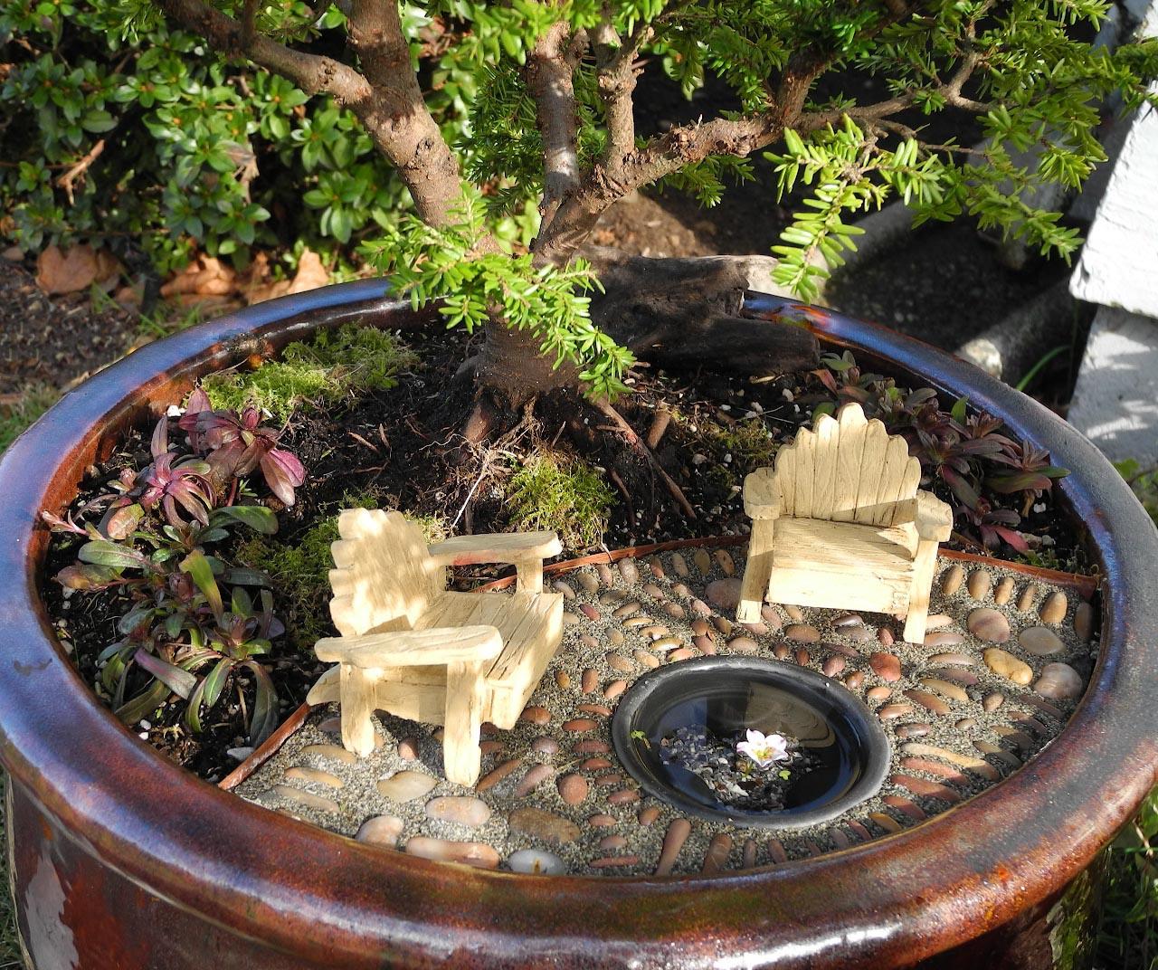 Fairy Garden Pond DIY