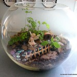 Fairy Garden Terrarium Ideas