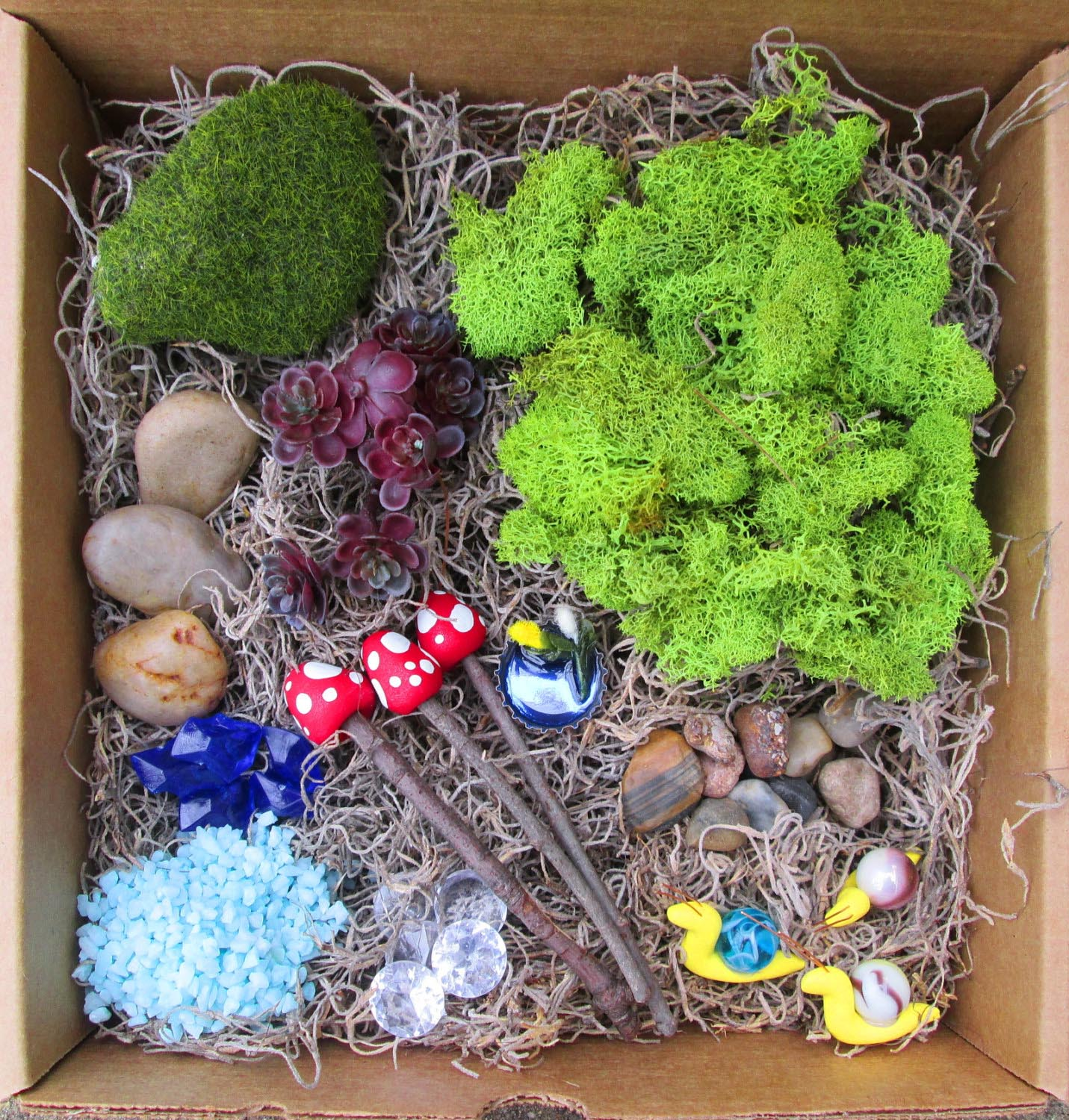 Fairy Garden Terrarium Kit