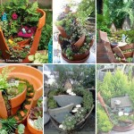 Fairy Gardens in Pots