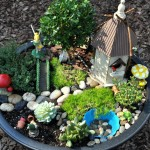 Fairy Miniature Gardens Ideas