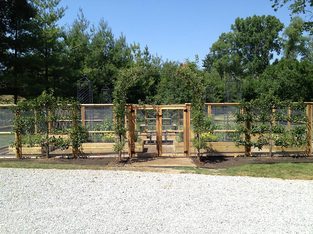 Fenced in Vegetable Gardens
