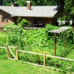 Fenced Vegetable Garden Plans