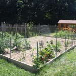 Fencing Around Vegetable Garden