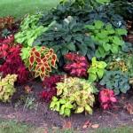 Flower Garden Plans Zone 4