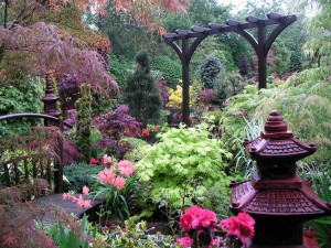 Four Season Perennial Garden Plan