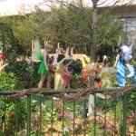 Garden Fairies and Pixies