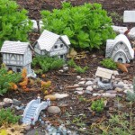 Good Plants for a Fairy Garden