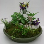 Good Plants for Fairy Gardens