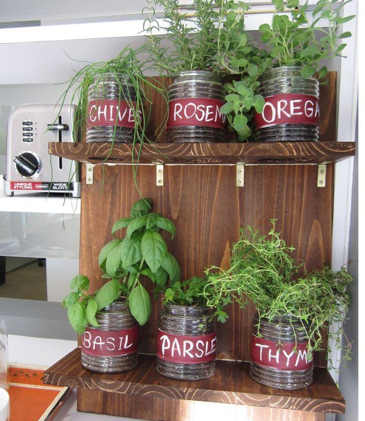 Growing a Herb Garden Outdoors