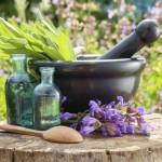 Growing an Herb Garden Outdoors