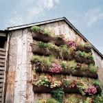Growing Herbs in a Vertical Garden