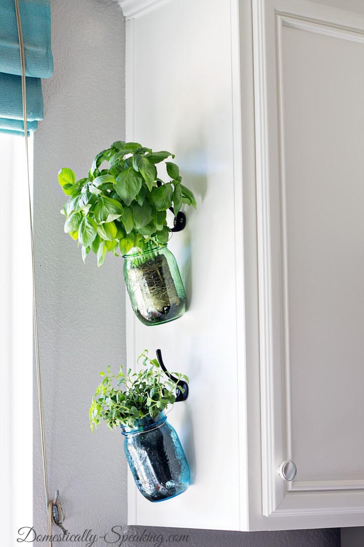 Hanging Herb Garden Kitchen