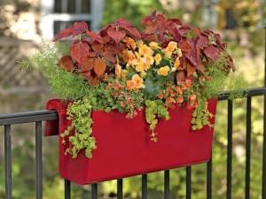 Herb Garden Deck or Patio