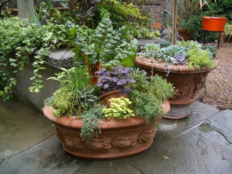 Herb Garden Design Patio