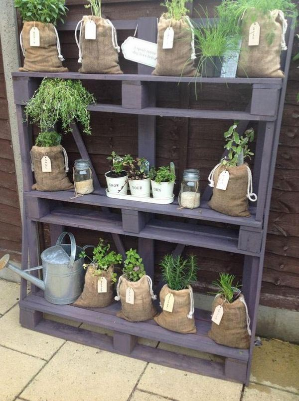 Herb Garden Ideas for Patio
