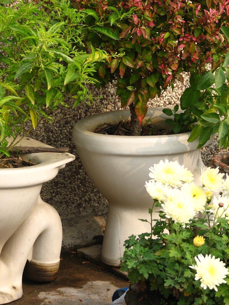 Herb Garden in Pots Ideas
