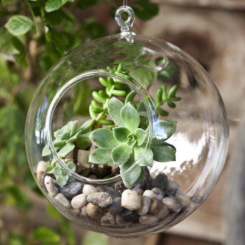 Herb Garden Kit Outdoor