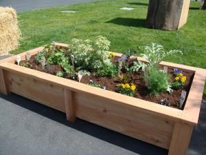 Herb Garden Layout Raised Bed