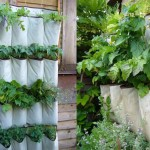 Herb Garden Outdoor Planter
