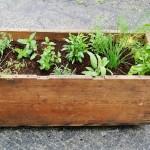 Herb Garden Planter Box Ideas